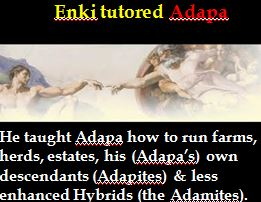 Enki tutored Adapa trim