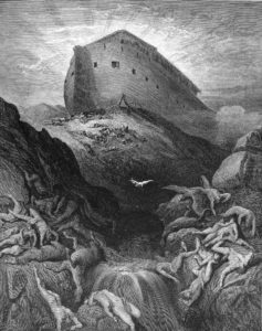 Noah arc bodies