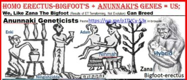 NIBIRANS MADE US FROM THEIR GENOME + GENES FROM ERECTUS | ENKI SPEAKS
